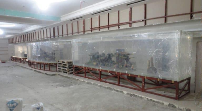 Commercial Aquarium Acrylic Supplier