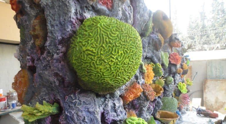 Aquarium Decoration & Wet Decorative