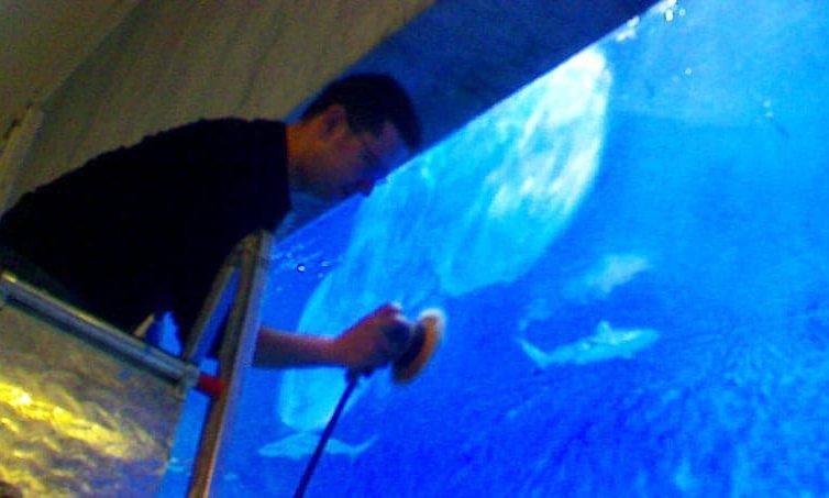 TDE provides complete maintenance services for aquariums