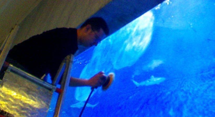 TDE provides complete maintenance services for aquariums