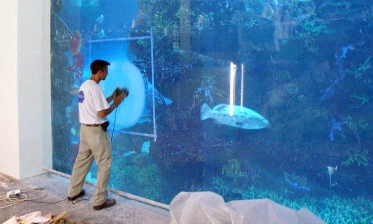 Large Aquarium Maintenance