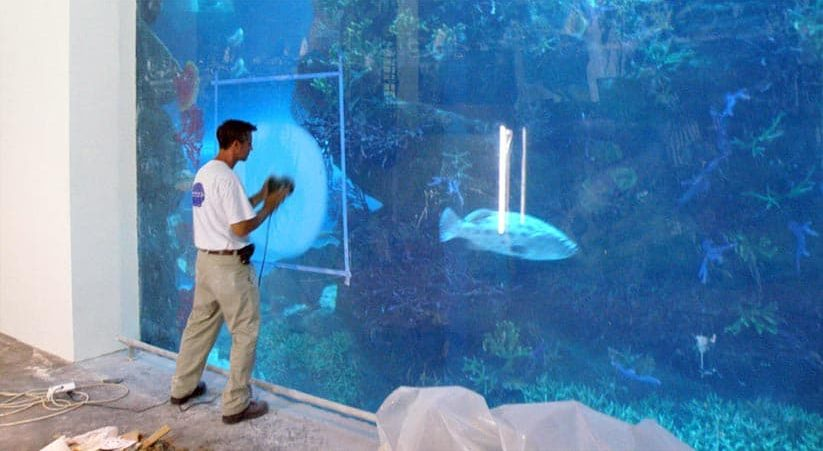 Large Aquarium Maintenance