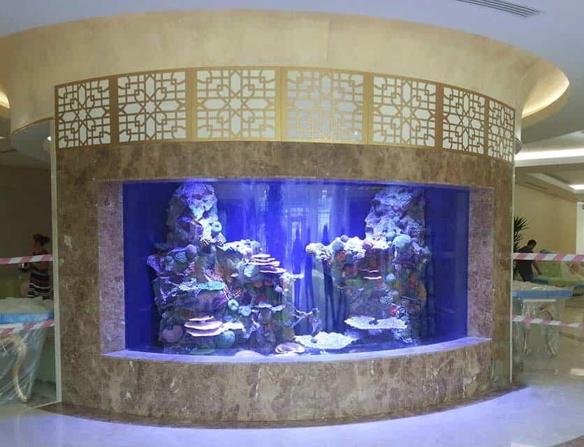 Custom Aquariums Services Consultancy Operation