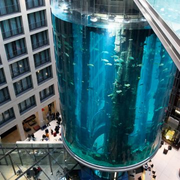 Custom Aquarium Designer, Mall Aquarium Design