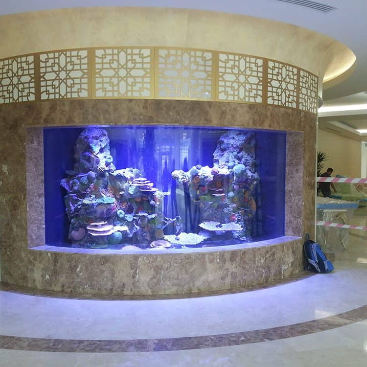 Custom Aquarium Design